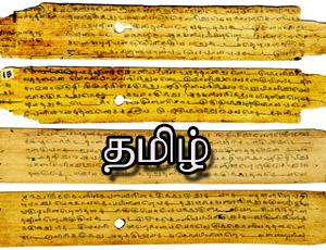 நாட்டை ஒன்றுபடுத்த ஹிந்தி அவசியம் என்று சொல்வது அரசியல் கட்டுக்கதை - அண்ணாதுரை